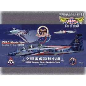 2017空軍雷虎特技小組小海報